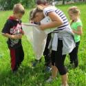Průzkum hmyzu